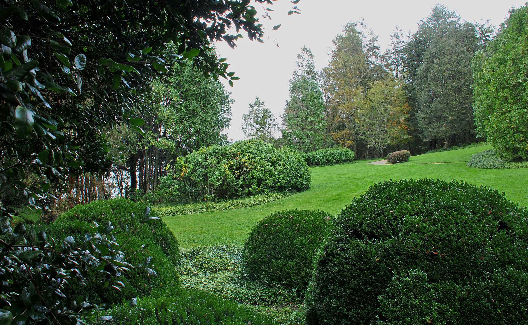 Теневой сад
